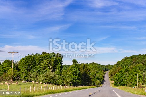 This is a photograph of a scenic country road with two lanes surrounded by trees in the Catskill Mountains in upstate New York.