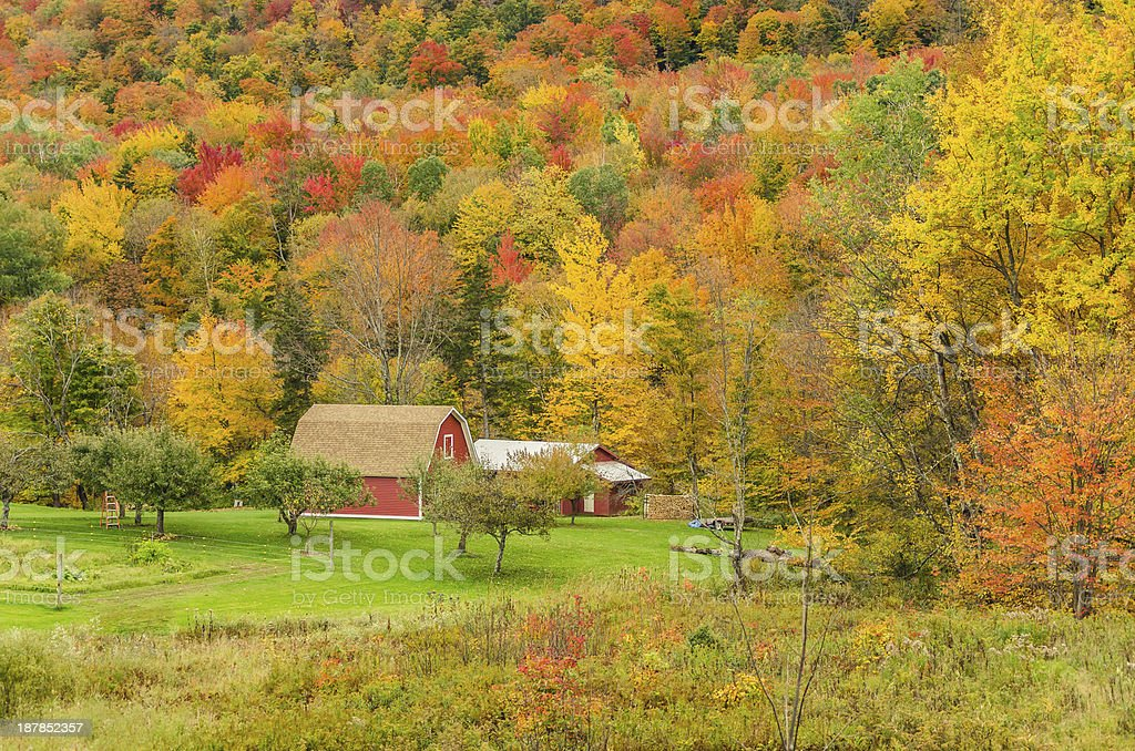 Rural Vermont in Autumn stock photo