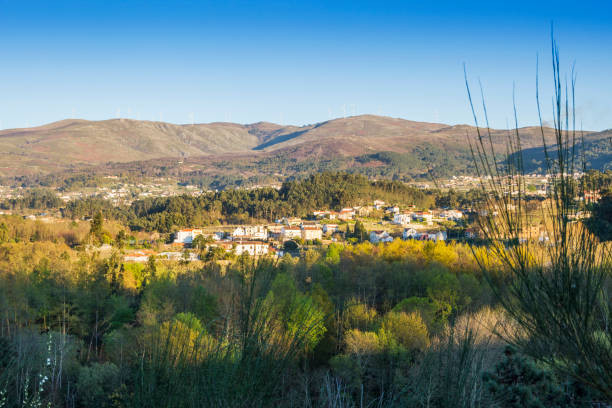 Rural village between forests stock photo