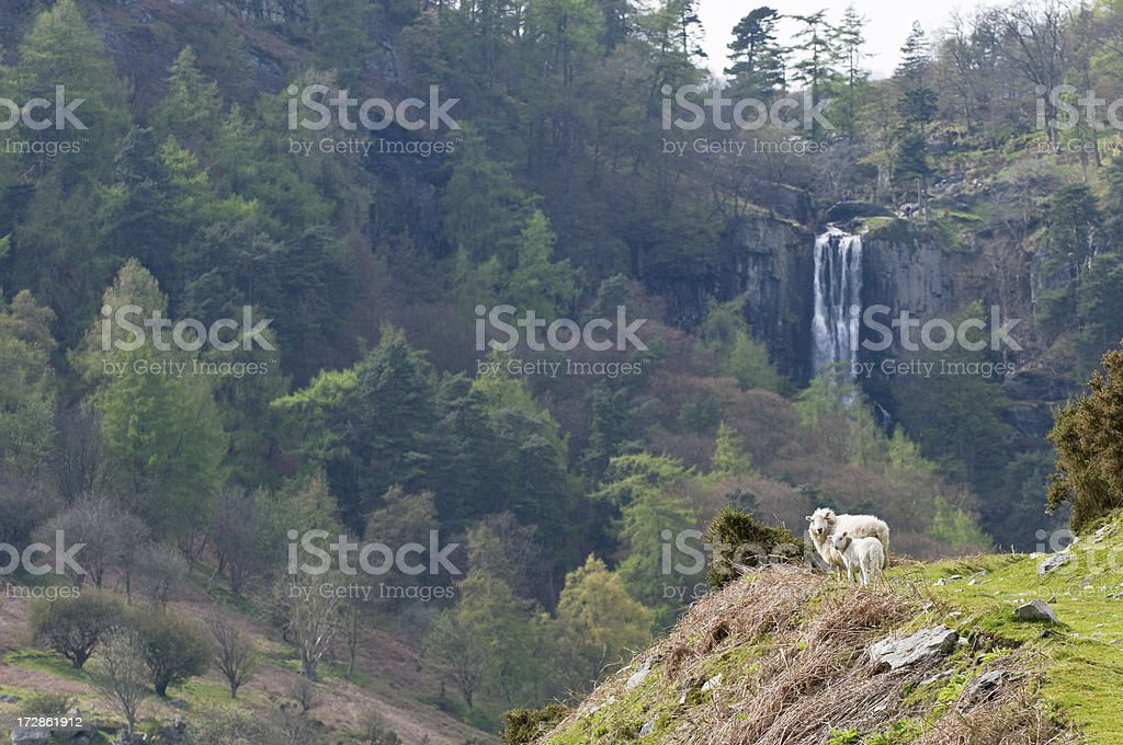 Rural Wales royalty-free stock photo