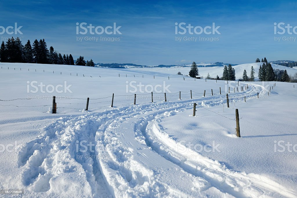 Rural Winter Landscape royalty-free stock photo