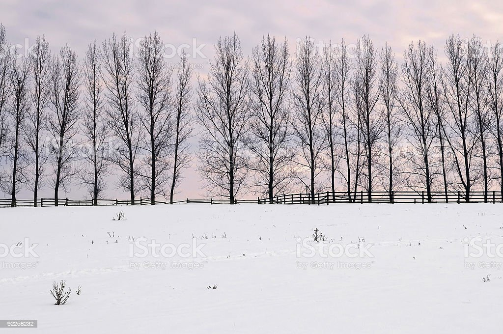 Rural winter landscape stock photo