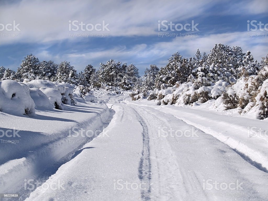 Rural winter road royalty-free stock photo