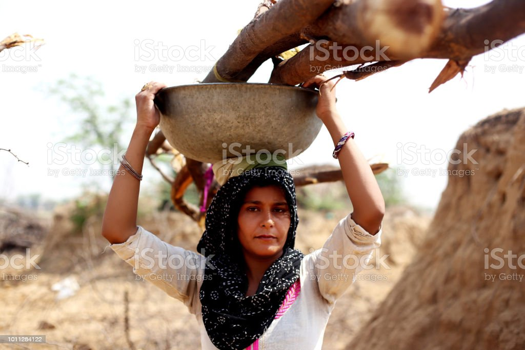 Rural women carrying woods on her head stock photo