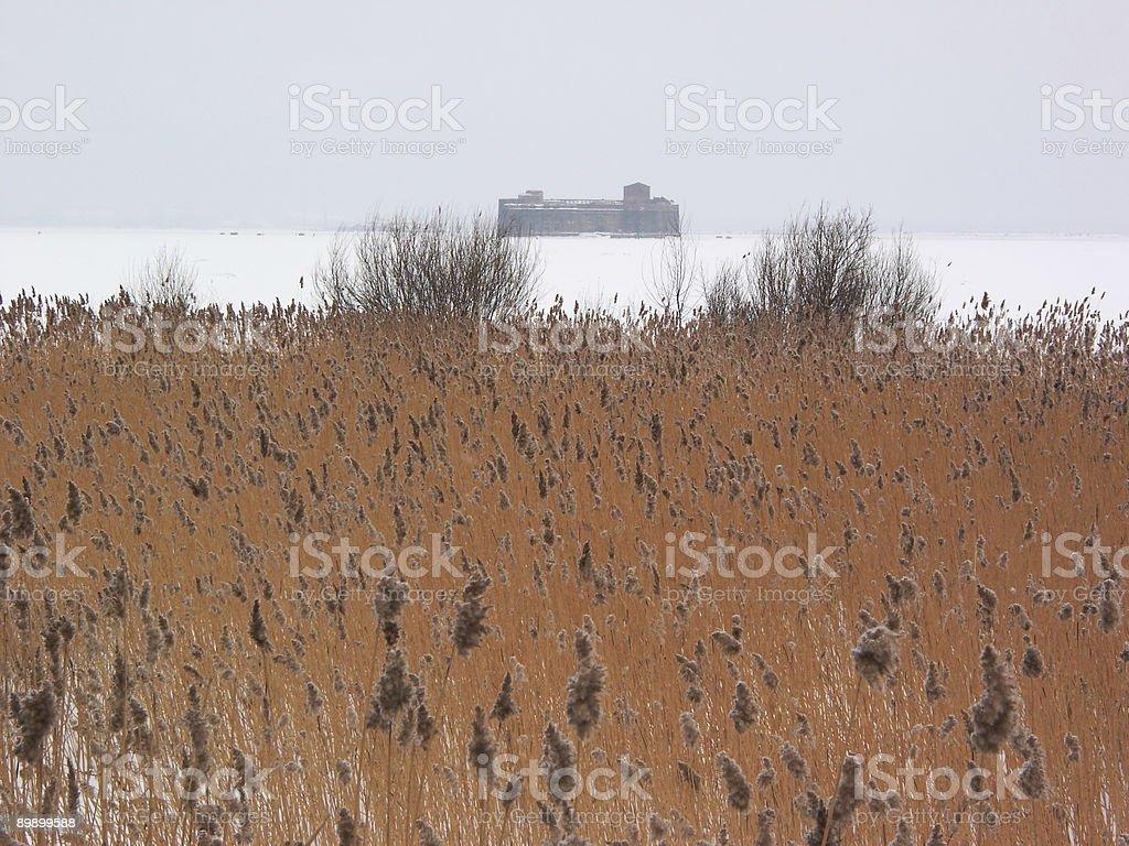 Rush und Festung Lizenzfreies stock-foto