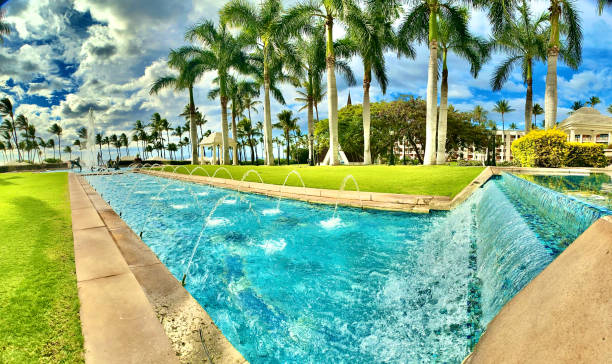 rushing pool waters and palm trees on a walk on maui, hi - usa samuel howell stock pictures, royalty-free photos & images