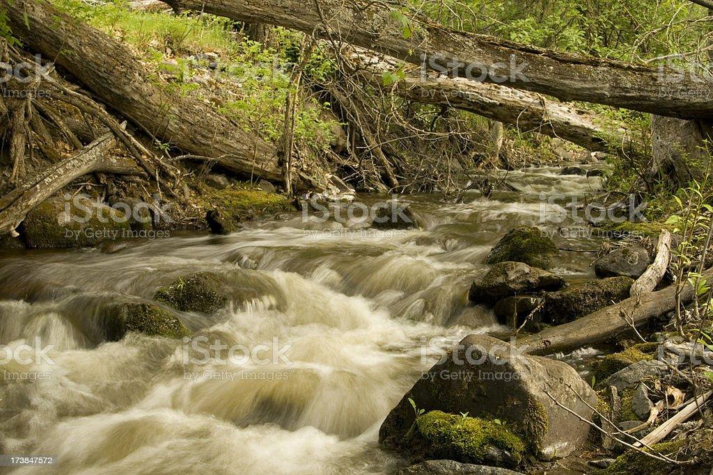 Rauschendes Wasser – Foto