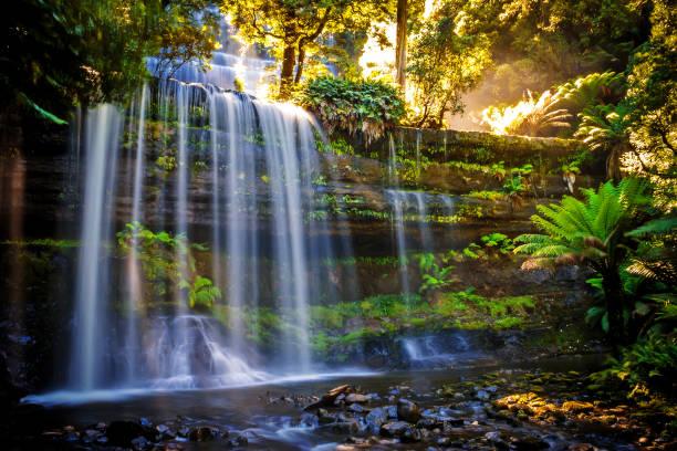 russel falls, mt field national park, part of tasmania's world heritage wilderness area, tasmania, australia - tasmania stock photos and pictures