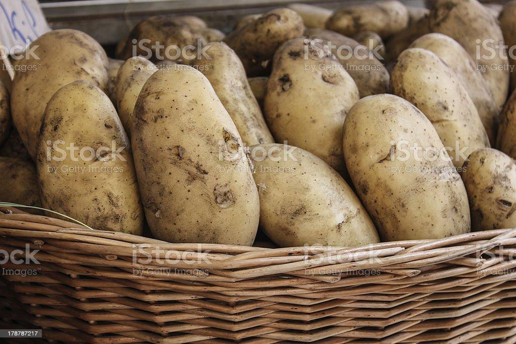 Russet Potato in Basket royalty-free stock photo