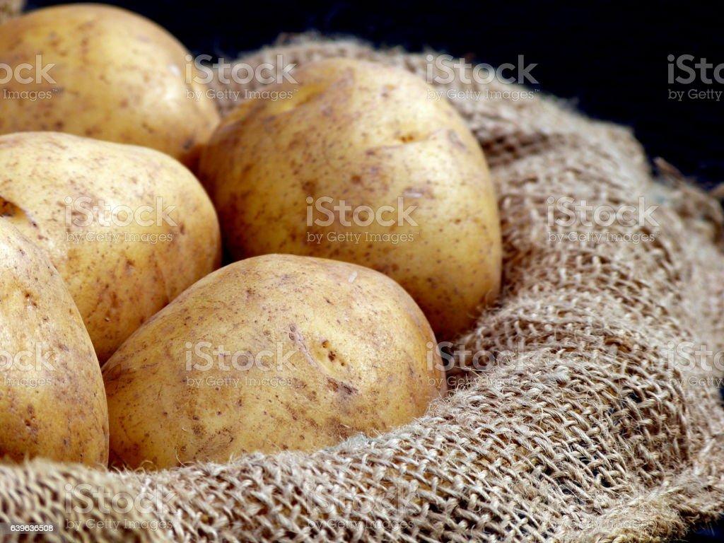 Batatas Russet - foto de acervo