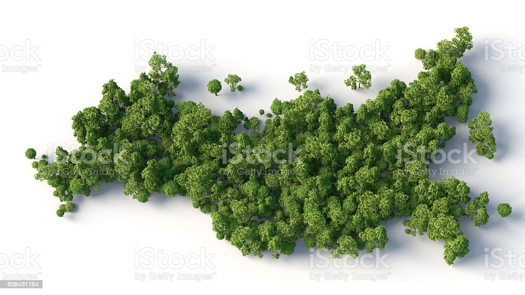 russia map with trees stock photo