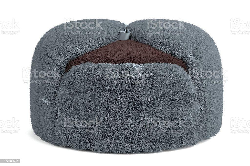 russian cap stock photo