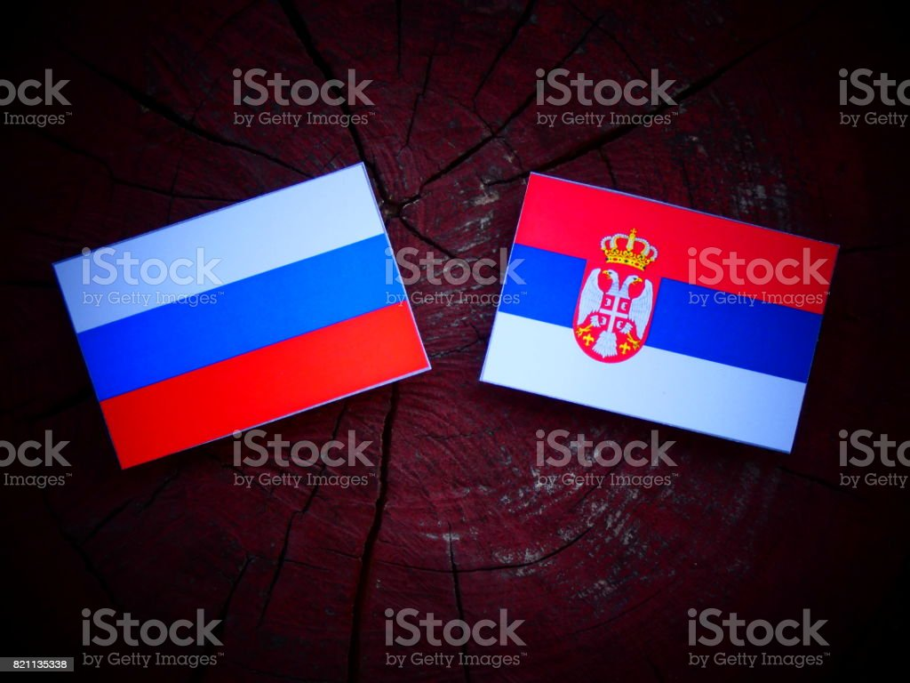 Russian flag with Serbian flag on a tree stump isolated - fotografia de stock