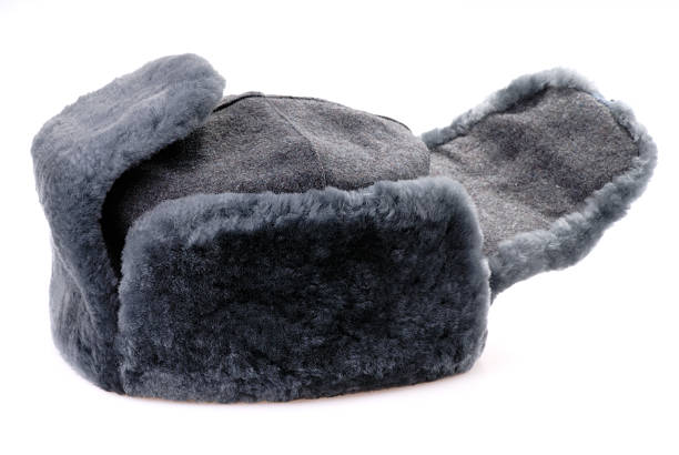 Russian fur hat with ear-flaps isolated stock photo