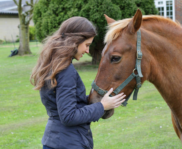 russian outdoor girl communing with palomino pony - whiteway pony stock photos and pictures