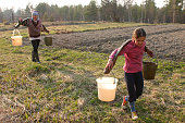 Russian peasant girl Carrying Water Buckets