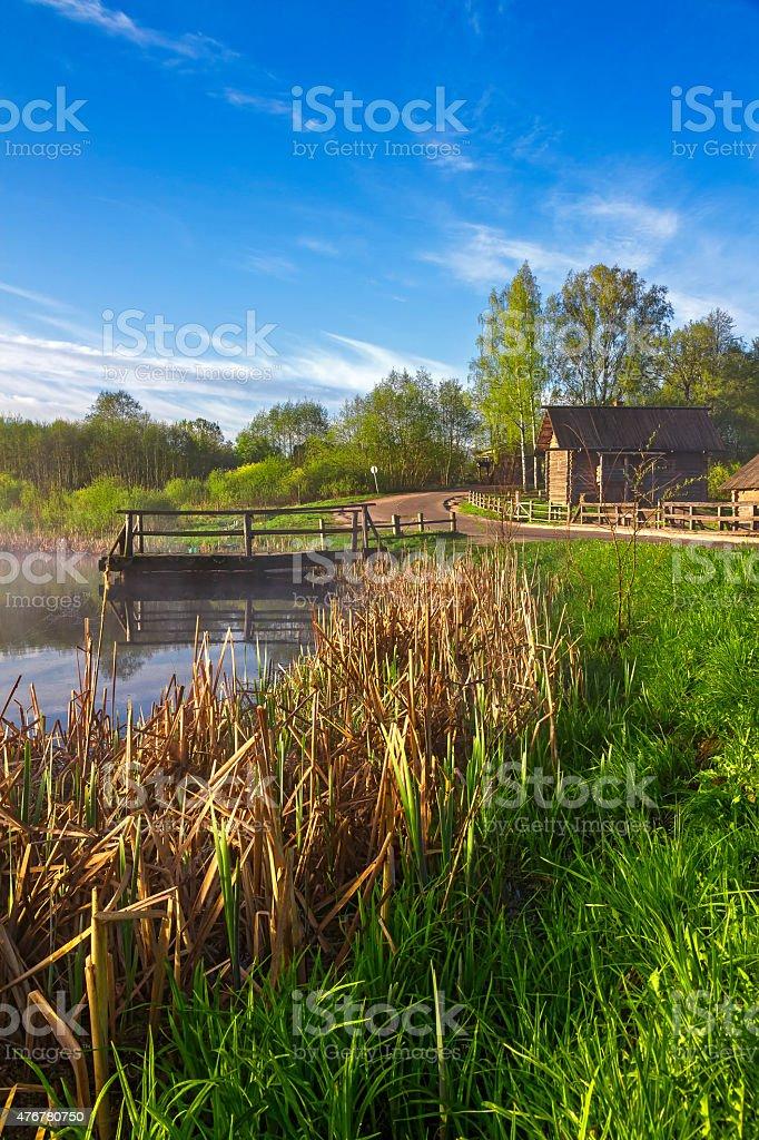 Русская Сельский пейзаж с озером и reeds стоковое фото
