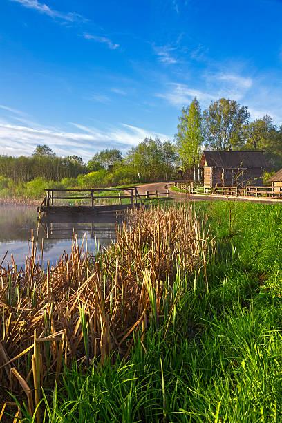Cтоковое фото Русская Сельский пейзаж с озером и reeds
