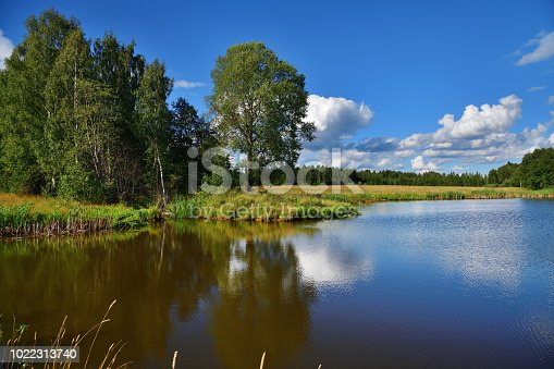 Beautiful russian summer landscape with lake and green fields and forest on background