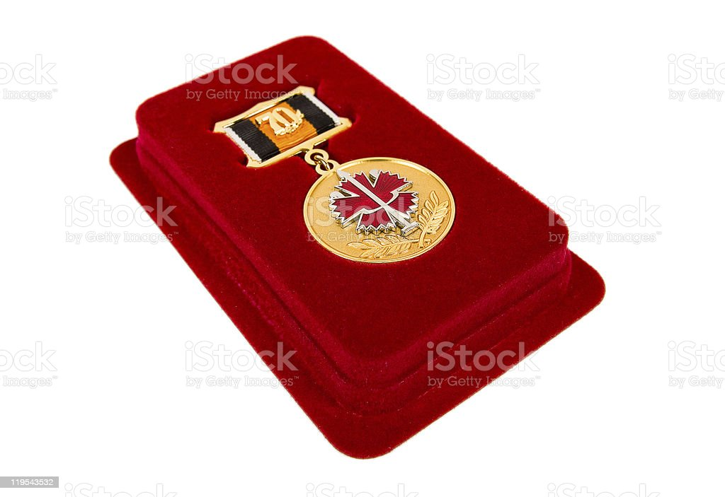Russian special medal royalty-free stock photo