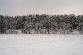 The beauty of russian snowy cloudy cold winter. Photography of snow covered expanses of Russia. Tourism concept.