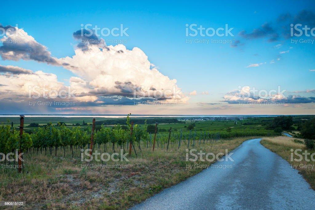 Rost bin Neusiedlersee Mit Tollen Wolken Und Weingarten – Foto