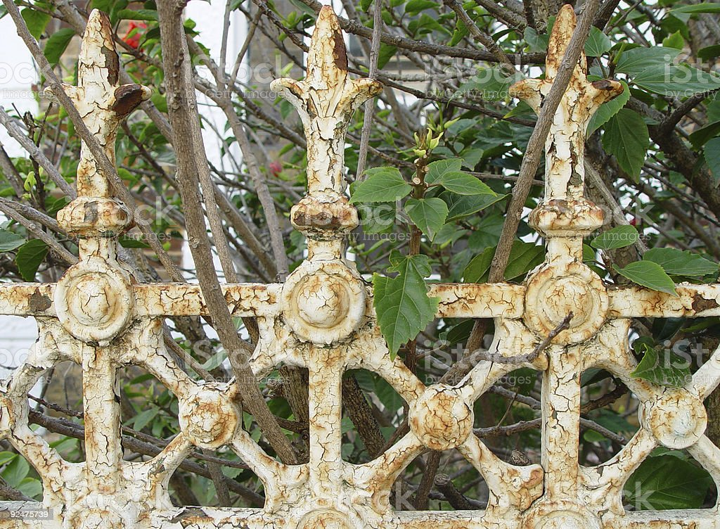 Rust and overgrowth royalty-free stock photo