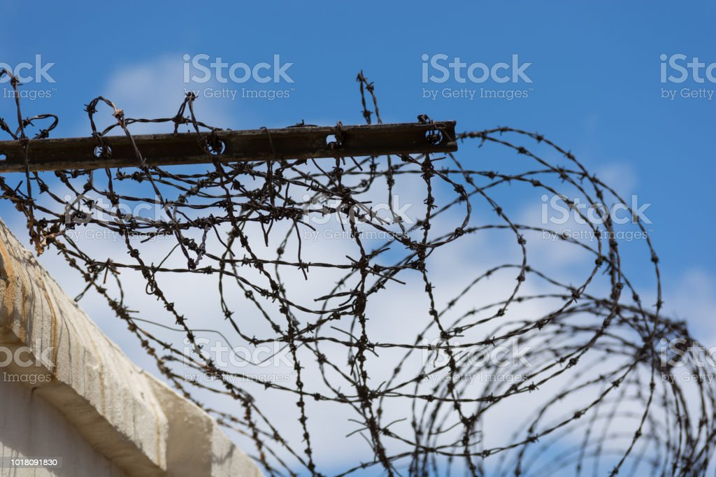 Barbed Wire Hook For Fence - DATA WIRING •