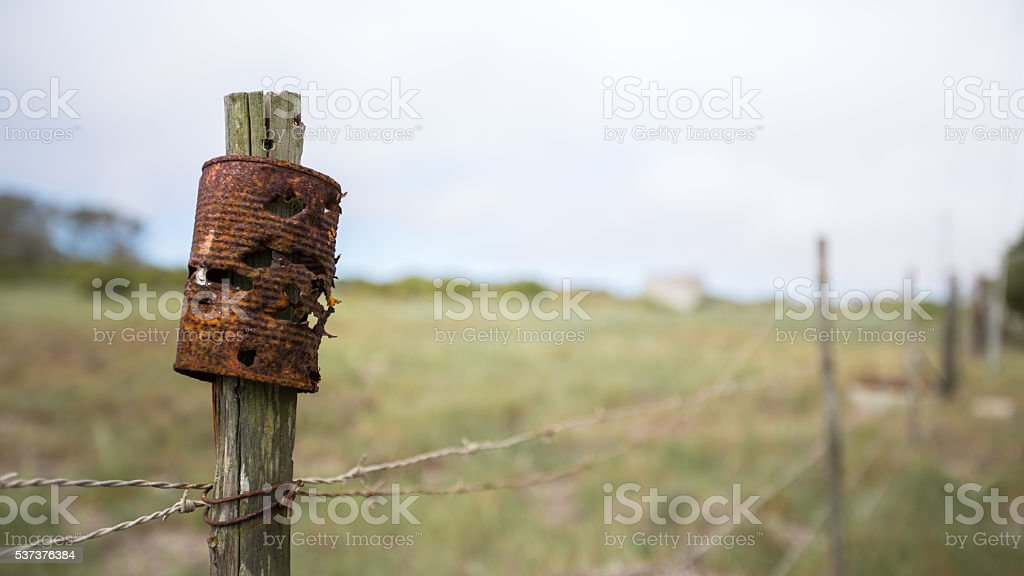 Rusted Tin Can used for Target Practice stock photo
