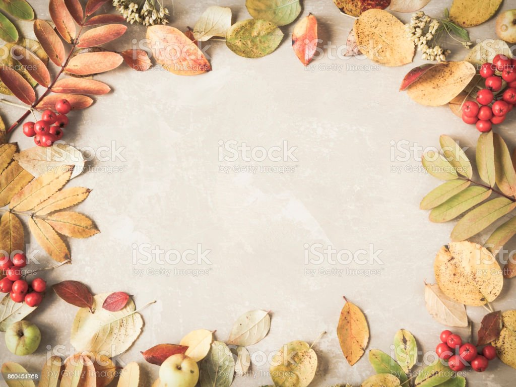 Rustic autumn background made of colorful fallen leaves and berries. Copyspace for text. stock photo