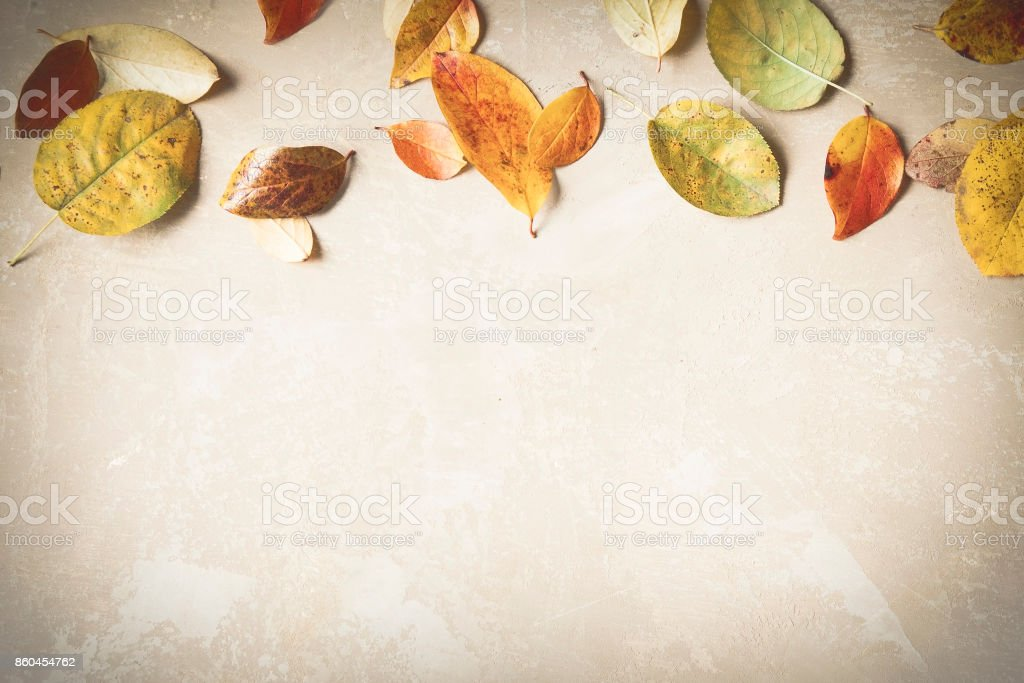 Rustic autumn background made of colorful fallen leaves. Minimal. Copyspace for text. stock photo