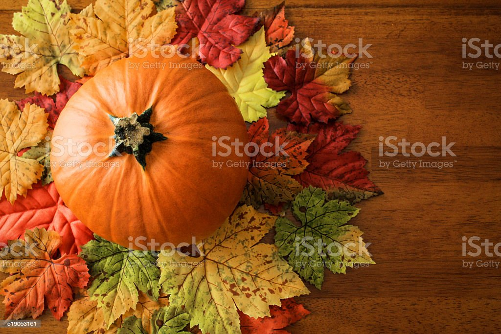 Rustic Autumn Concept stock photo