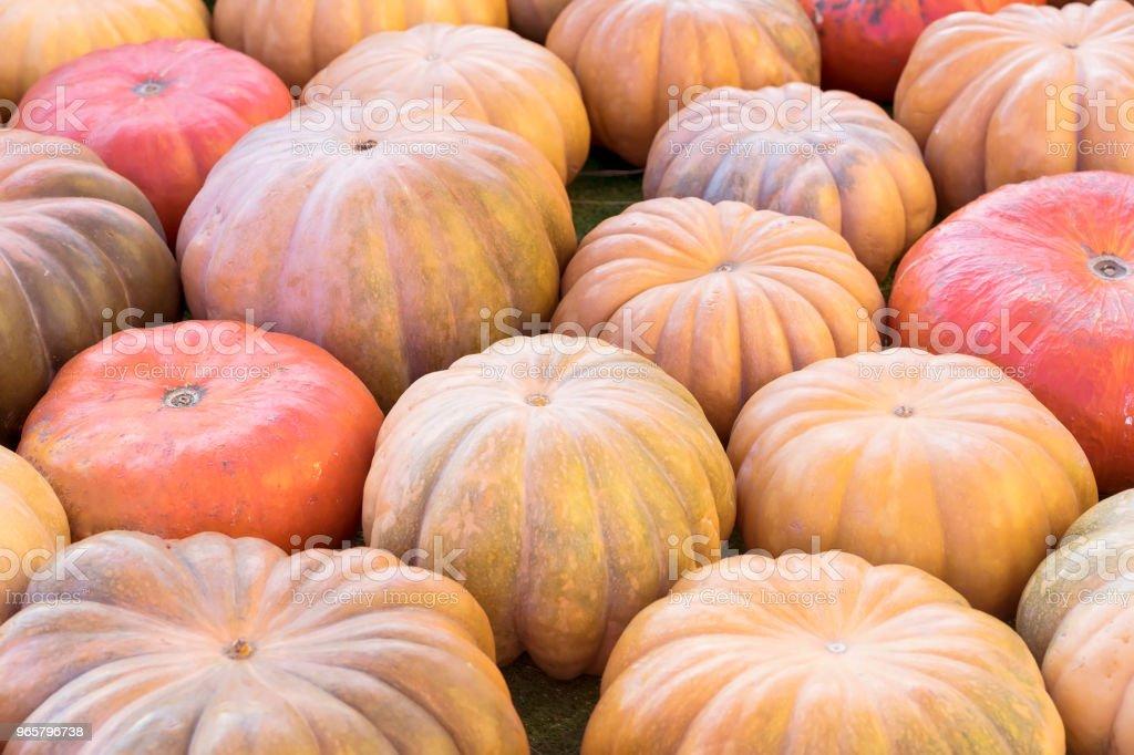 Rustieke achtergrond met kleurrijke pompoenen close-up. Oogst, Thanksgiving Day concept - Royalty-free Archiefbeelden Stockfoto