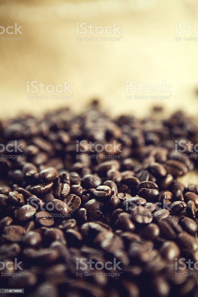 Rustic Coffee Crop with Copy Space royalty-free stock photo