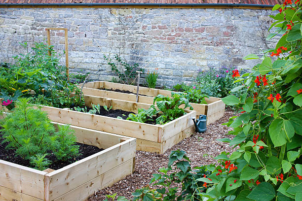 Rustic Country Vegetable & Flower Garden with Raised Beds stock photo