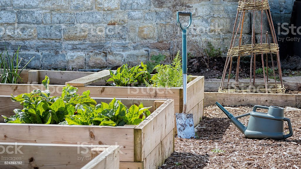 Rustic Country Vegetable Garden Raised Beds. Spade & Watering Can stock photo