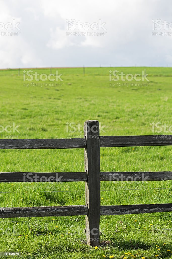 Rustic Electrified Fence Surrounding Grazing Pasture royalty-free stock photo