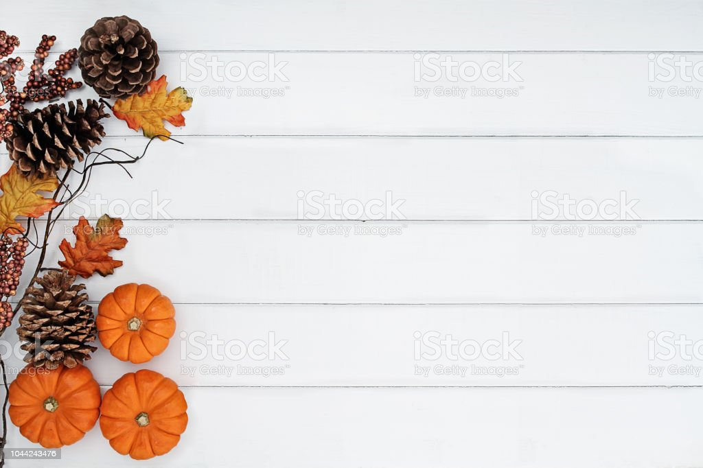 Rustic fall background Rustic fall background of autumn leaves, pine cones and mini pumpkins with free copy space for text over a white rustic background. Image shot from overhead. Above Stock Photo
