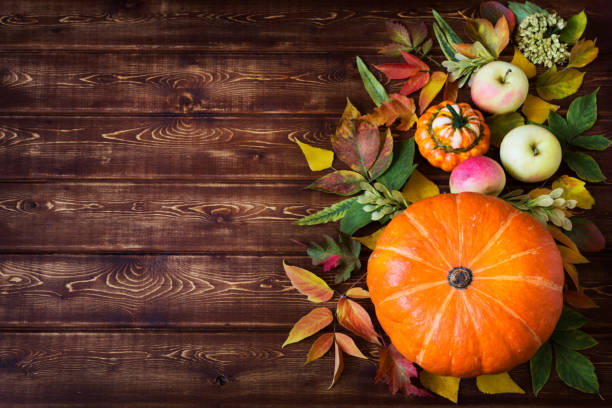 Rustic fall decor with pumpkin, apples, copy space stock photo