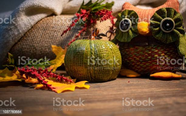 Rustic fall thanksgiving decoration with pumpkin and owl picture id1037783554?b=1&k=6&m=1037783554&s=612x612&h=024kuihjhovisvxbdq pjf94yz790lldh9h5mp7setw=