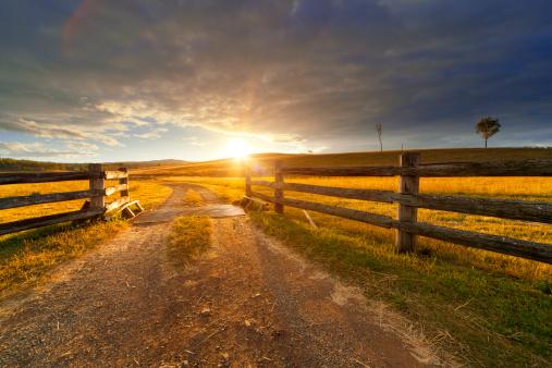 Gravel path onto rural property under golden sunset.