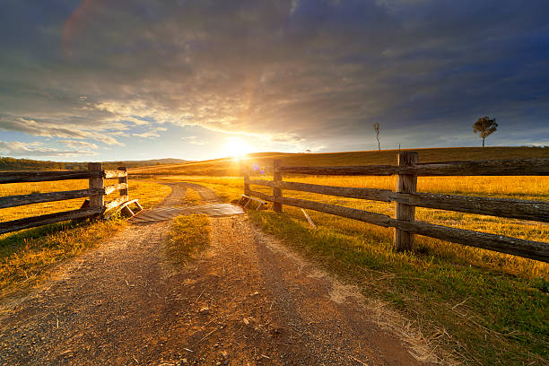 Rustic Farm Gravel path onto rural property under golden sunset.  outback stock pictures, royalty-free photos & images