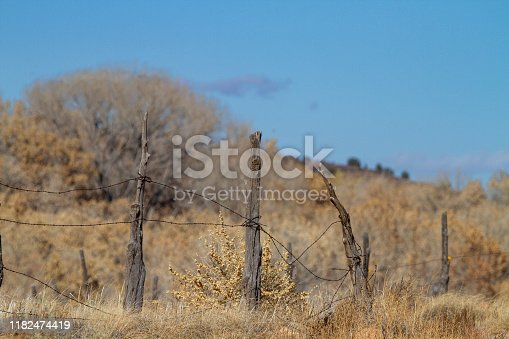 Weathered wood and barbed wire