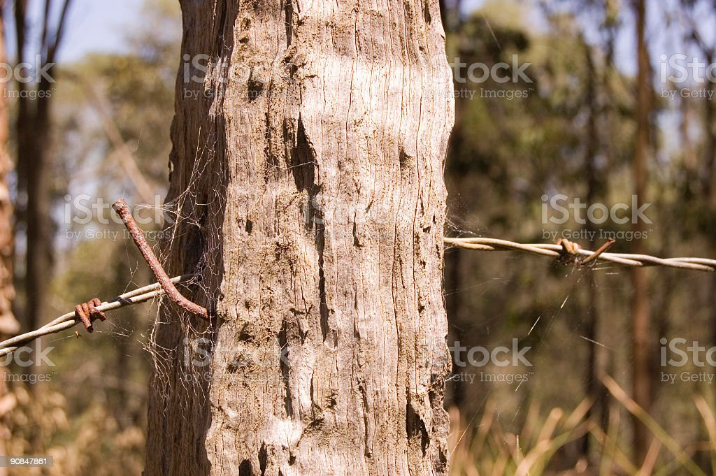 Rustic Fence post stock photo