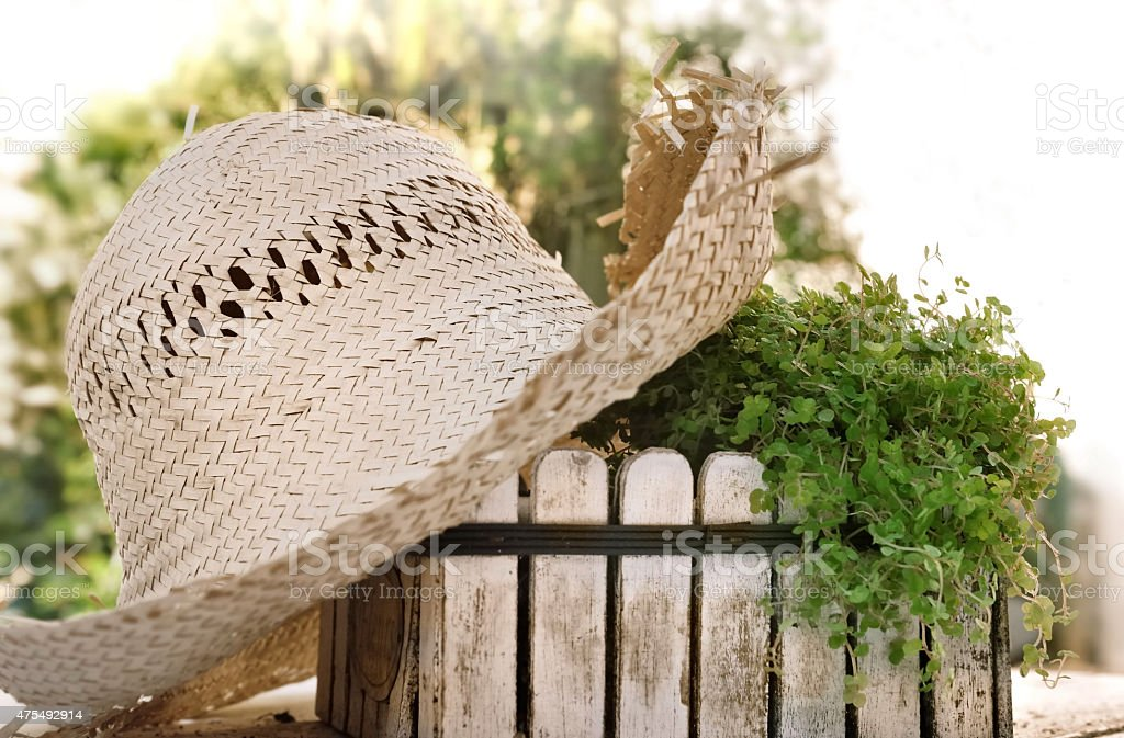 rustic garden in summer royalty free stock photo - Rustic Garden 2015