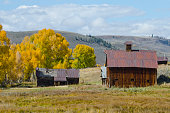 A rustic barn with a metal roof sits with other old ranch buildings in a high mountain field, backed up by a stand of golden cottonwood trees enjoying the changing season of Autumn.
