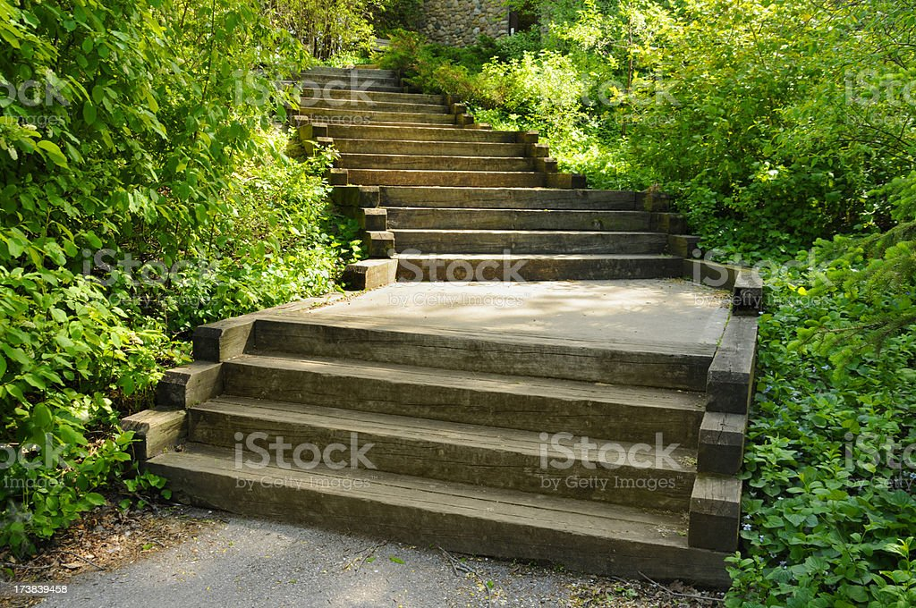 Rustic Outdoor Wood Staircase, Deck, Patio, Green Foliage, Terraced Yard stock photo