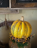Rustic Autumn decoration. Pumpkin, berry and branch wreaths.