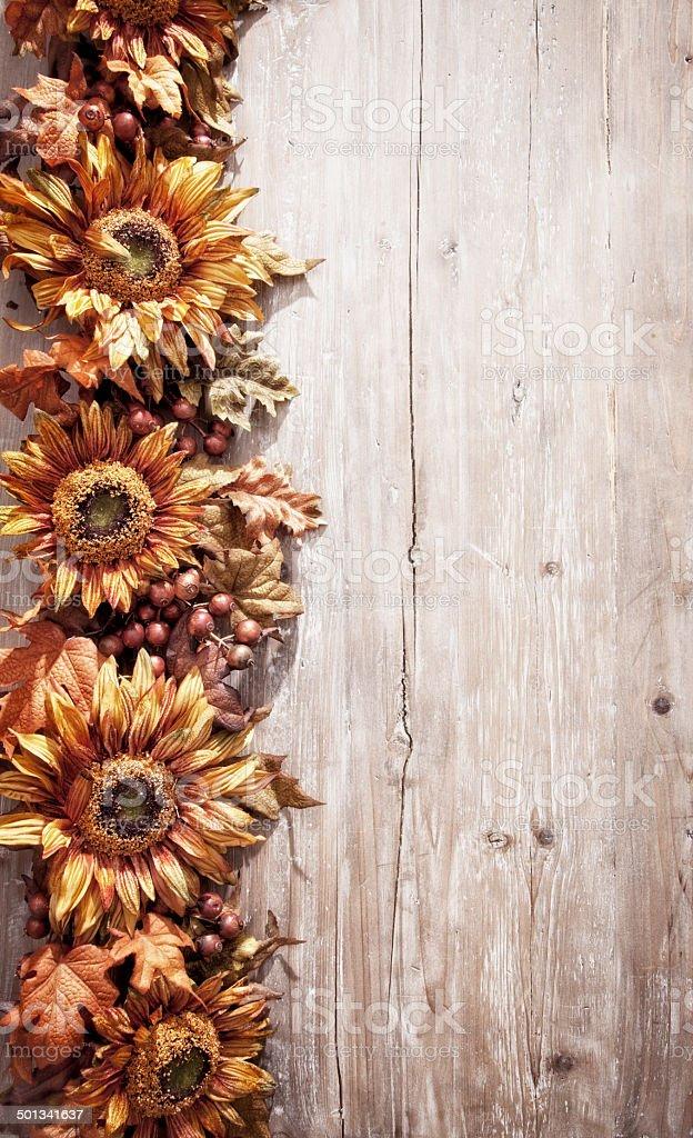 Rustic Sunflower Border Royalty Free Stock Photo