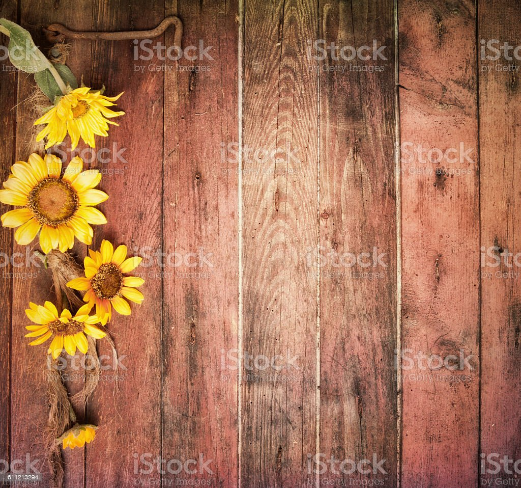 Rustic Sunflowers And An Old Barn Wood Door Background Horizontal Royalty Free Stock Photo